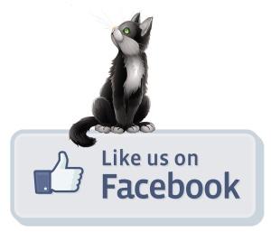 www.facebook.com/hotdawg